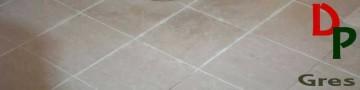 Productos para limpieza y protección de superficies de gres.